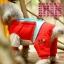 (พร้อมส่ง) ชุดกันหนาวสุนัขสี่ขา พอลแฟรงค์ สีแดง thumbnail 1