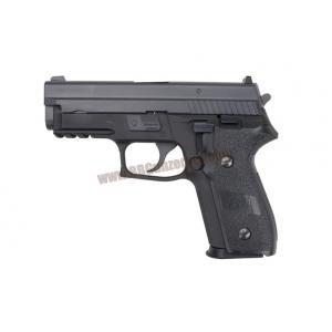 Sig Sauer P229-E2 - WE
