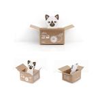 โพสต์-อิท น้องเหมียวในกล่อง (BORI)