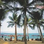 โปสการ์ด หาดจอมเทียน พัทยา จังหวัดชลบุรี /ทะเล/ชายหาด