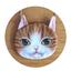 กระเป๋าสะพายโซ่น้องแมว 3มิติ thumbnail 6