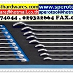 19PC COMBINATION WRENCH SET