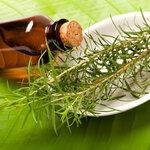 ที ทรี ออยล์ (Tea Tree Oil)