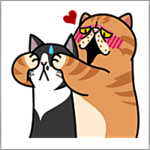 Meow Me2