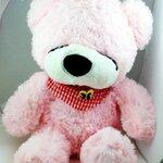 ตุ๊กตาหมีหลับ ตุ๊กตาหมีตัวเล็ก ขนาด 45 CM สีชมพู