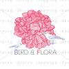 Bird and Flora