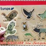 จิ๊กซอรูปสัตว์ชุด สัตว์ทวีปยุโรป