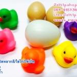 เป็ดลอยน้ำ 5 สี พร้อมไข่เป็ ไข่ไก่ บีบดัง