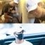 หมวก BULLS 66 แบบ Jackson thumbnail 3
