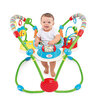 Bright Starts Giggle Bugs Activity Jumper
