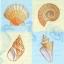 แนพกิ้น 33x33 Sea L-443440 thumbnail 1