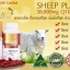 Angel 's Secret Sheep Placenta 38,000mg CoQ10&ACE Plus 100 Capsules thumbnail 5