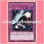 DREV-JP066 : Parallel Selection / Parallel Select (Rare) thumbnail 1