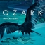 Ozark Season 1 (บรรยายไทย 2 แผ่นจบ) thumbnail 1