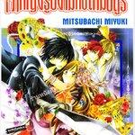 การ์ตูนเรื่อง เจ้าหญิงรูปงามกับสามอสูร เล่ม 1-4 จบ (ผู้แต่ง MITSUBASHI MIYUKI)